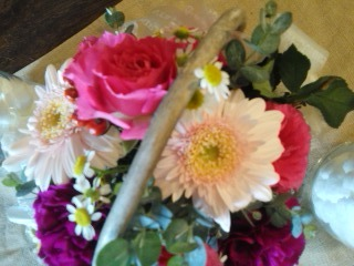 pinkrose1.jpg